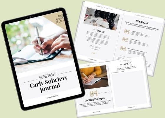 Sneak Peek photos of Early Sobriety Journal by Soberish