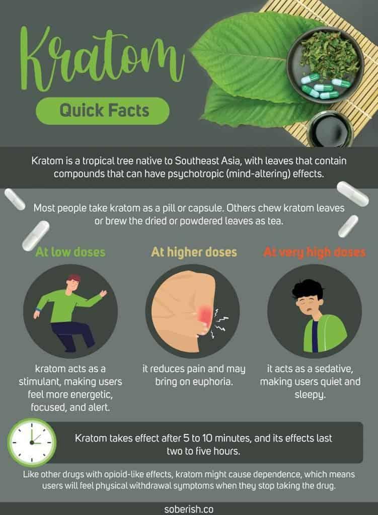 kratom facts infographic