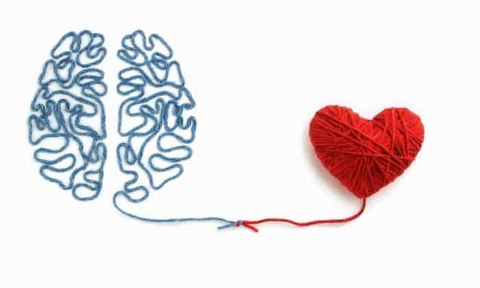 yarn heart and brain