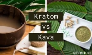 kratom vs kava kratom and kava