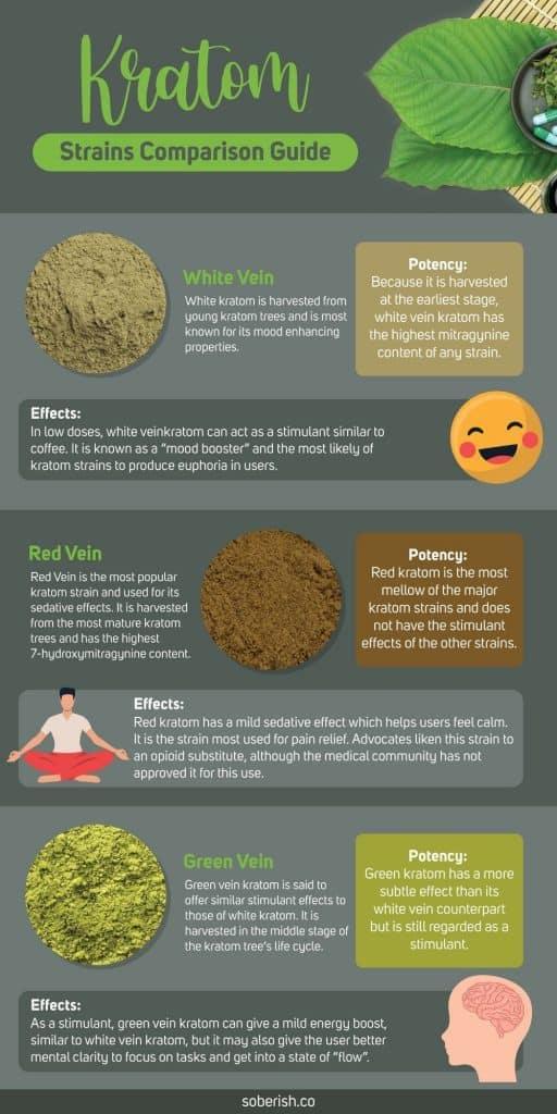 Kratom strain infographic
